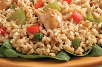 Sesame Ginger Chicken and Brown Rice with Veggies