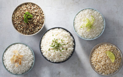 Getting to Know Rice Grains