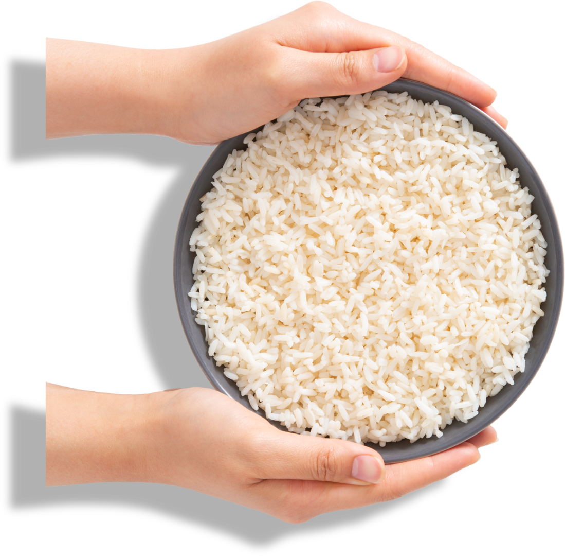 Hands holding a bowl of rice